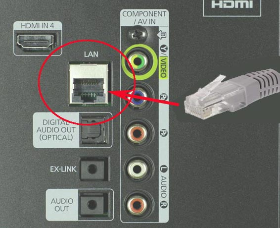 Разъём LAN(RJ45) в телевизоре и кабель